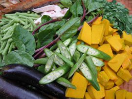 Healthy care garcinia cambogia review