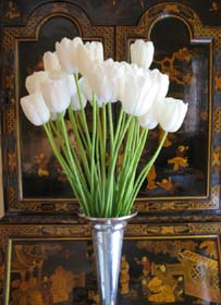 frenchtulips
