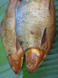 boneless bangus for sale