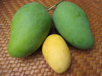 millmango1