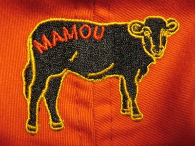 mamou2