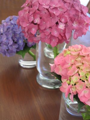mothers day flowers to colour in. Hydrangeas or milflores, in