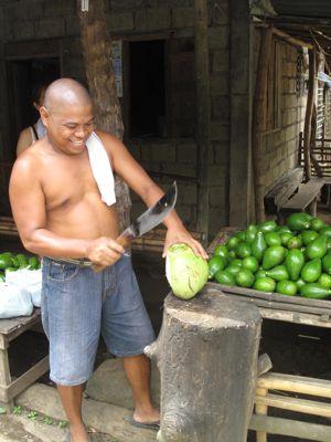 coconuts4