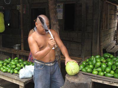 coconuts5