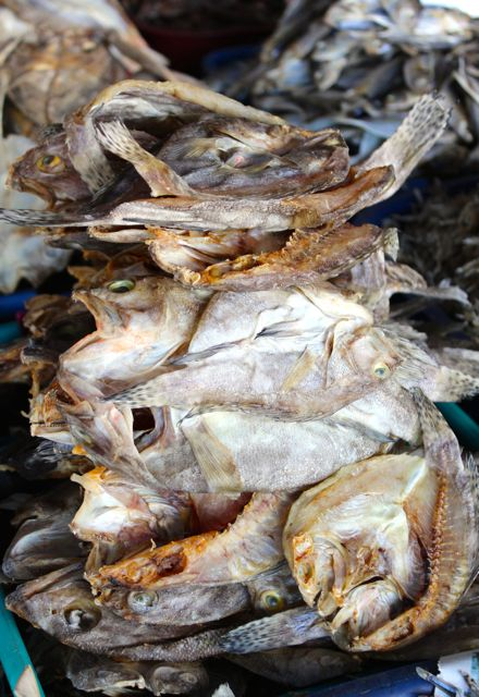 Market Manila - Dried Fish at the Bantayan Town Market - General